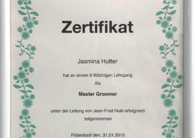 Zertifikat Groomer